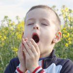 Las alergias
